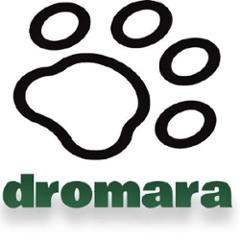 org.dromara