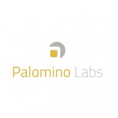 com.palominolabs.metrics