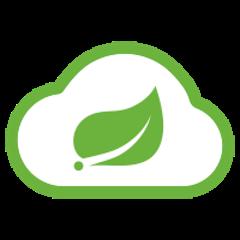 org.springframework.cloud